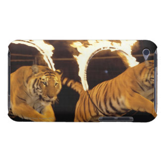 Two tigers leaping through burning rings of fire barely there iPod covers