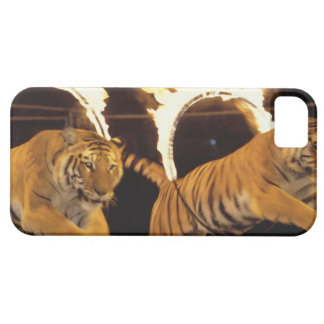 Two tigers leaping through burning rings of fire case for the iPhone 5
