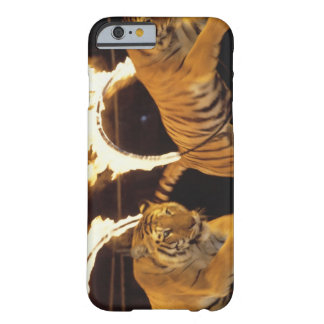 Two tigers leaping through burning rings of fire barely there iPhone 6 case