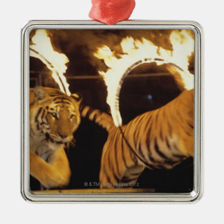 Two tigers leaping through burning rings of fire christmas ornament