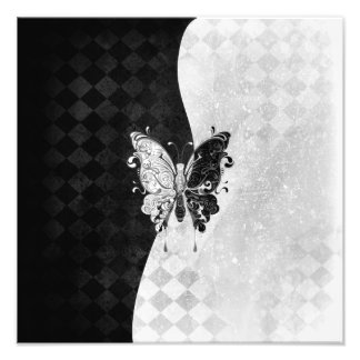 Two Tone Butterfly Photo Print