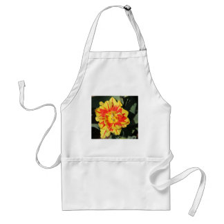 two tone flowers apron