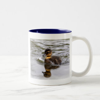 Two Tone Mug: Mallard Duckling Two-Tone Coffee Mug