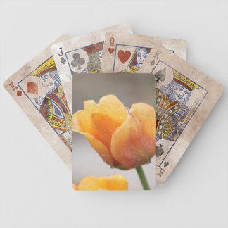 Two-Toned Tulips Playing Cards