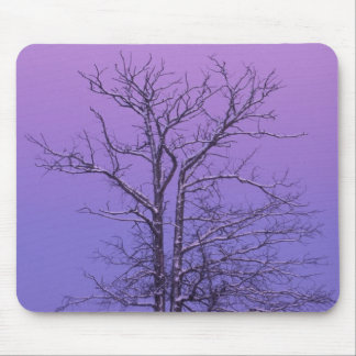 Two Trunked Tree at Sunrise; Chippewa County, Mouse Mat