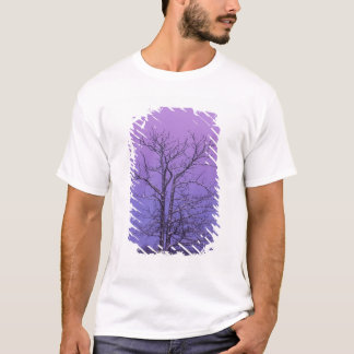 Two Trunked Tree at Sunrise; Chippewa County, T-Shirt