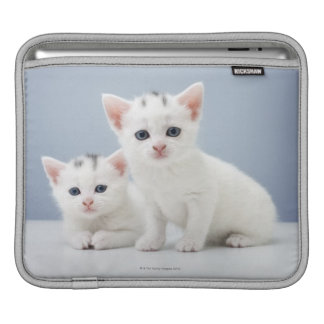 Two very young white kittens stare inquisitively iPad sleeve