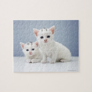 Two very young white kittens stare inquisitively jigsaw puzzle