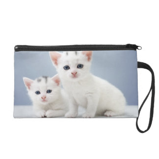Two very young white kittens stare inquisitively wristlet