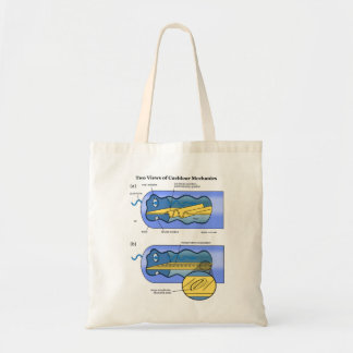 Two Views of Cochlea Mechanics Inner Ear Tote Bags