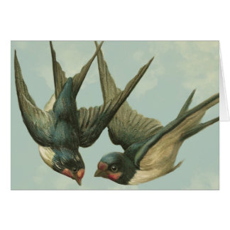 Two Vintage Swallows Greeting Card