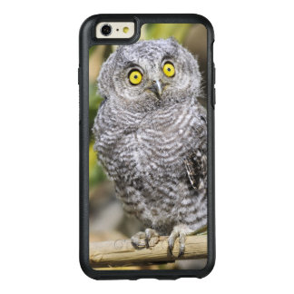 Two-Week Old Baby Screetch-Owl OtterBox iPhone 6/6s Plus Case