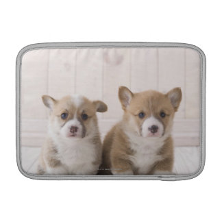 Two Welsh Corgi Sitting Sleeves For MacBook Air