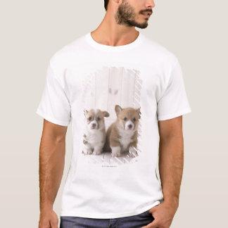 Two Welsh Corgi Sitting T-Shirt