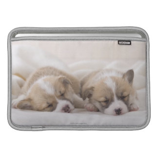 Two Welsh Corgi Sleeping MacBook Sleeve