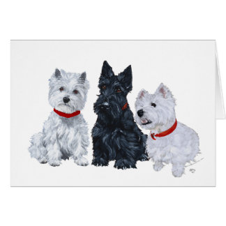 Two Westies and a Scottie Greeting Card