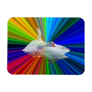 two white geese in very fancy  background rectangular magnets