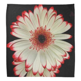 Two White Gerbera Daisy Flowers Kerchief