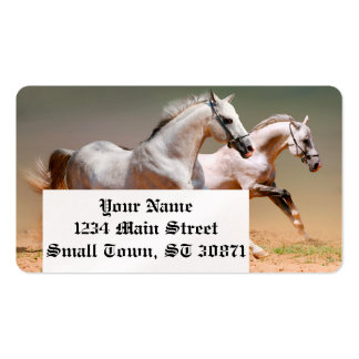 two white horses running pack of standard business cards