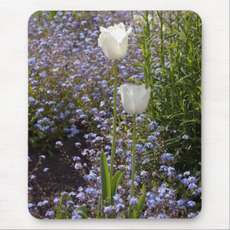 Two White Tulips Mousepads