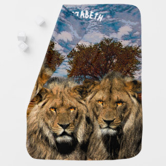 Two Wild Lions On African Savannah Background Baby Blanket
