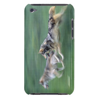 Two wolves in mountain meadow barely there iPod cases
