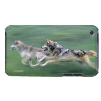 Two wolves in mountain meadow barely there iPod cover