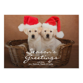 Two Yellow Lab Christmas Puppies Card