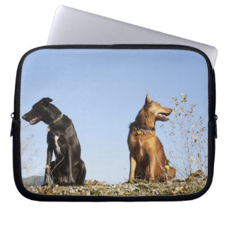 Two young dogs looking in opposite directions. laptop sleeve