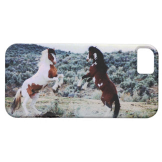 Two Young Horses Playing iPhone 5 Case