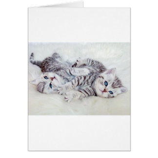 Two young shorthair silver tabby cats play lying card