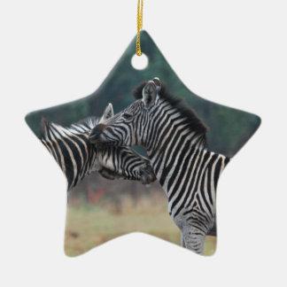 Two Zebras Ceramic Star Decoration