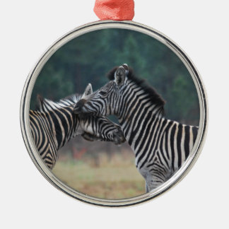 Two Zebras Christmas Ornament