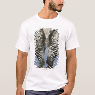 Two Zebras (Equus quagga) drinking water, T-Shirt