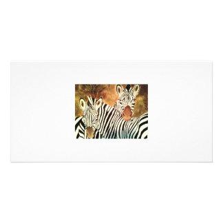 two zebras customized photo card