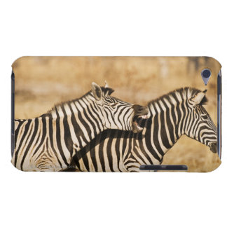 Two zebras standing in grass barely there iPod covers