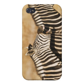 Two zebras standing in grass iPhone 4/4S covers