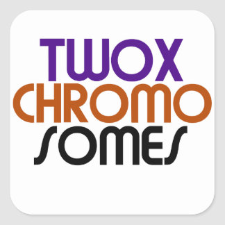 TwoXChromosomes Square Stickers