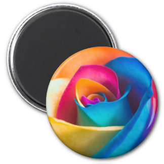 Tye Dye single rose Magnet