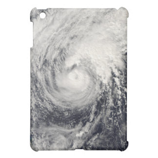Typhoon Dolphin in the Philippine Sea Cover For The iPad Mini