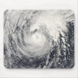 Typhoon Dolphin in the Philippine Sea Mouse Mat