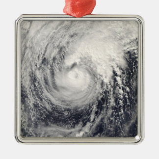 Typhoon Dolphin in the Philippine Sea Silver-Colored Square Decoration