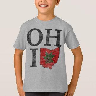 Typographic Ohio Vintage Red Buckeye Nut Kids T-Shirt