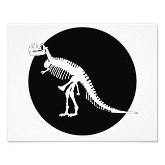 Tyrannosaurus Rex Photograph