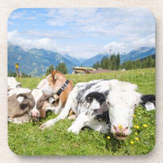Tyrol, Austria Coaster