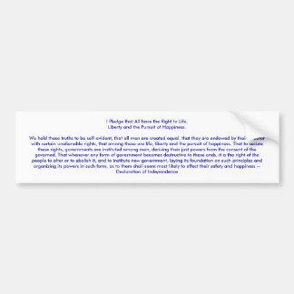 !!! U Create Declaration of Independence Bumper Sticker