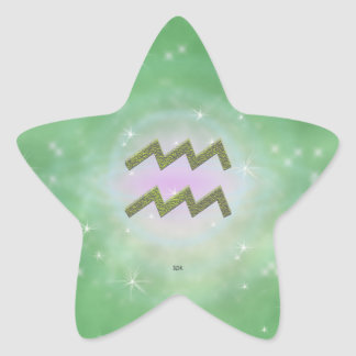 U Pick Color/ Aquarius Zodiac Sign Star Sticker