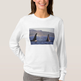 U.S.A., Alaska, Inside Passage Surfacing Orca T-Shirt