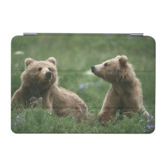 U.S.A., Alaska, Kodiak Two sub-adult brown bears iPad Mini Cover