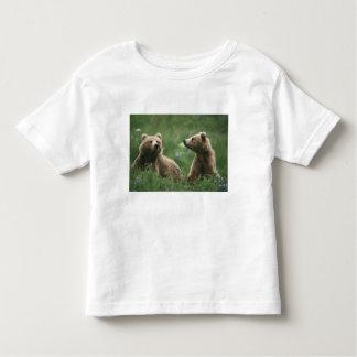 U.S.A., Alaska, Kodiak Two sub-adult brown bears Toddler T-Shirt